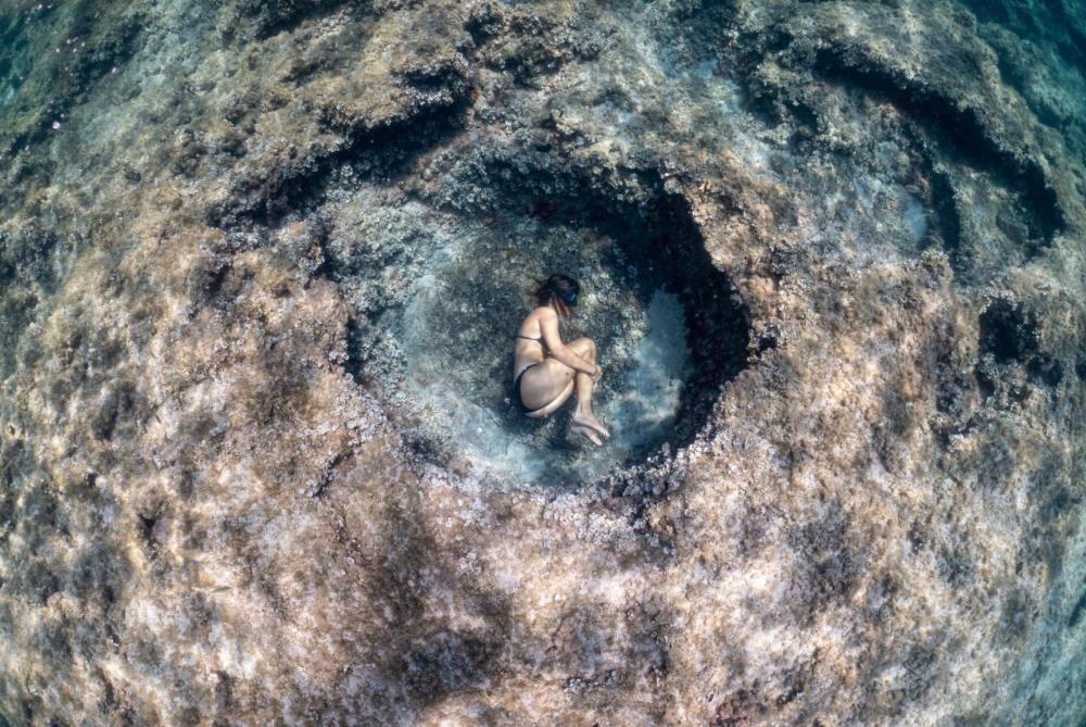 Die Sieger des Wettbewerbs der Meeresfotografie auf Mallorca
