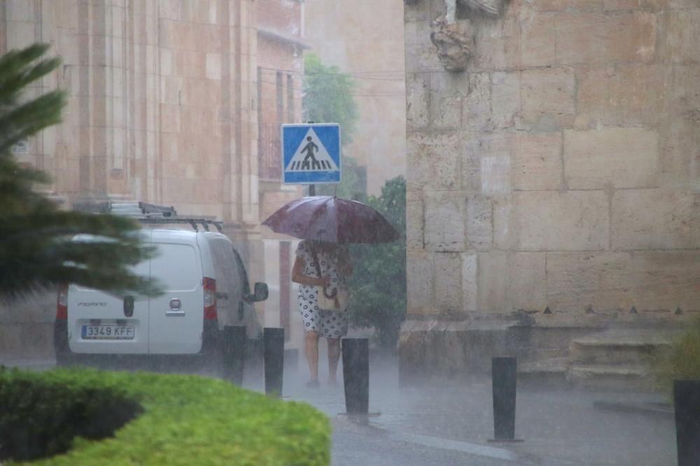 Así está lloviendo en la Vega Baja