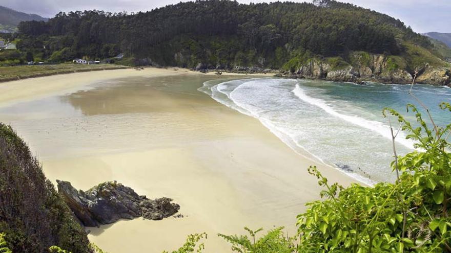 Xilloi_OVicedo_Turismo_Galicia.jpg