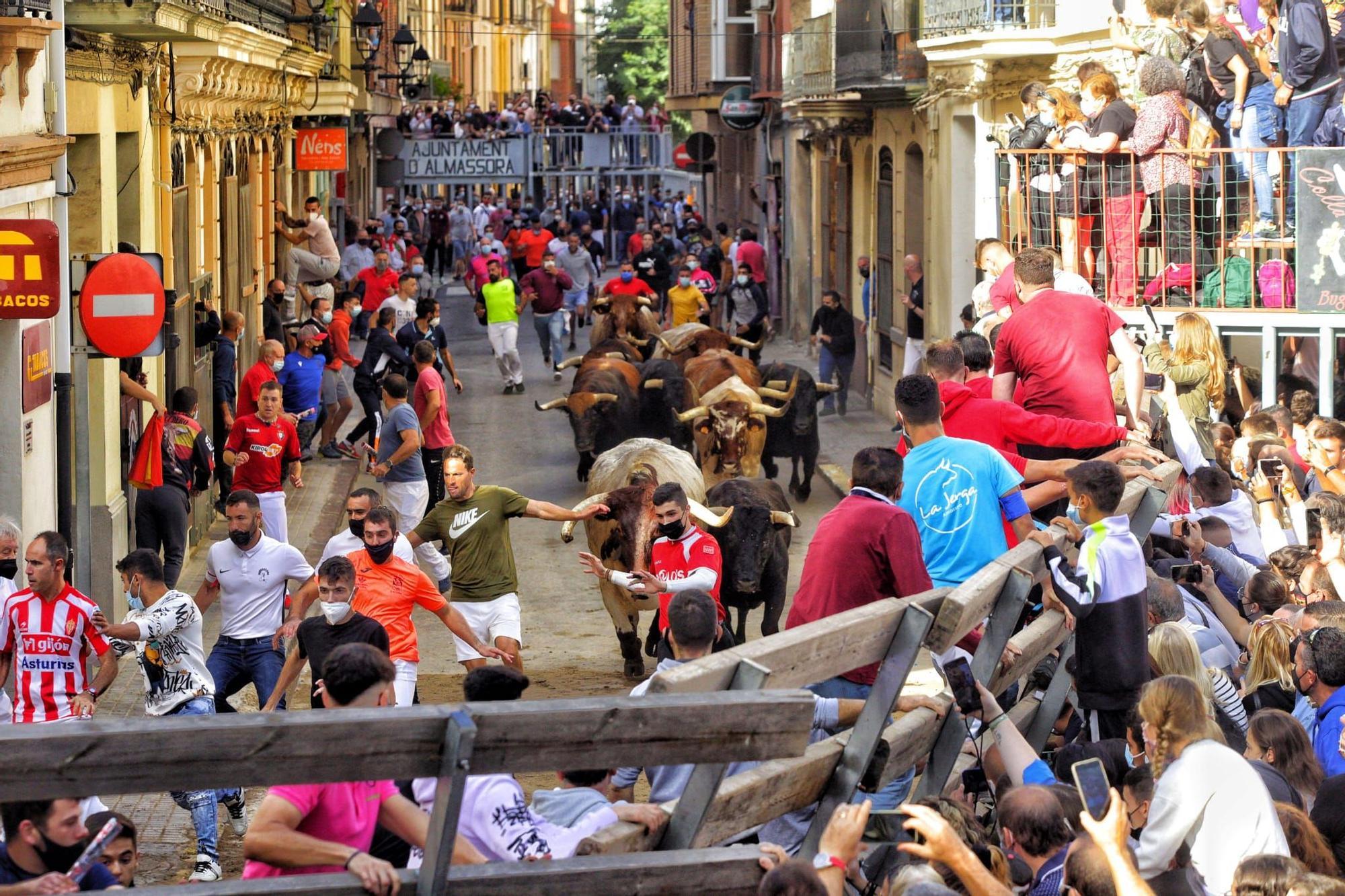 Bous al carrer | Las mejores imágenes del encierro de Almassora