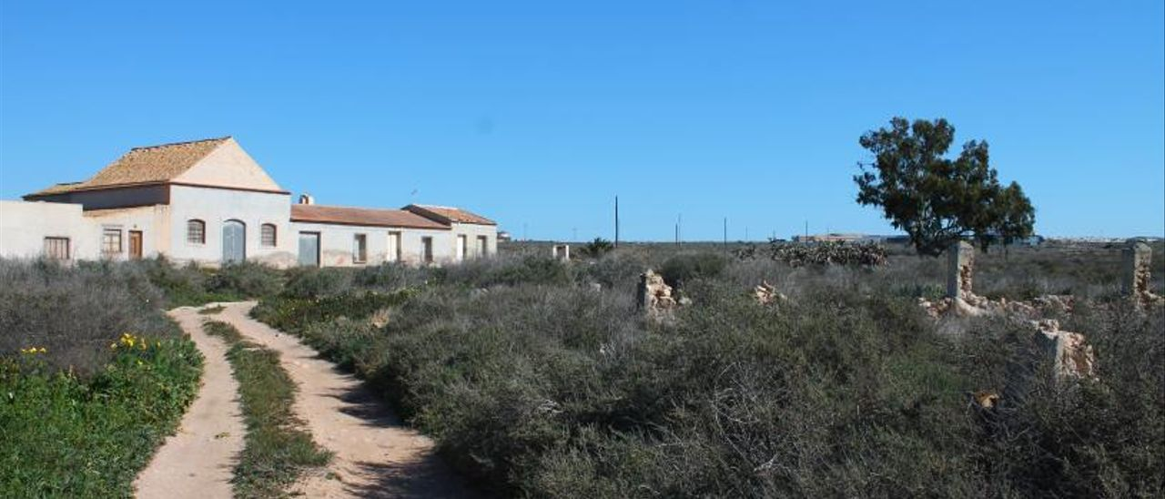 Imagen del terreno de La Hoya, una antigua finca de secano. | TONY SEVILLA