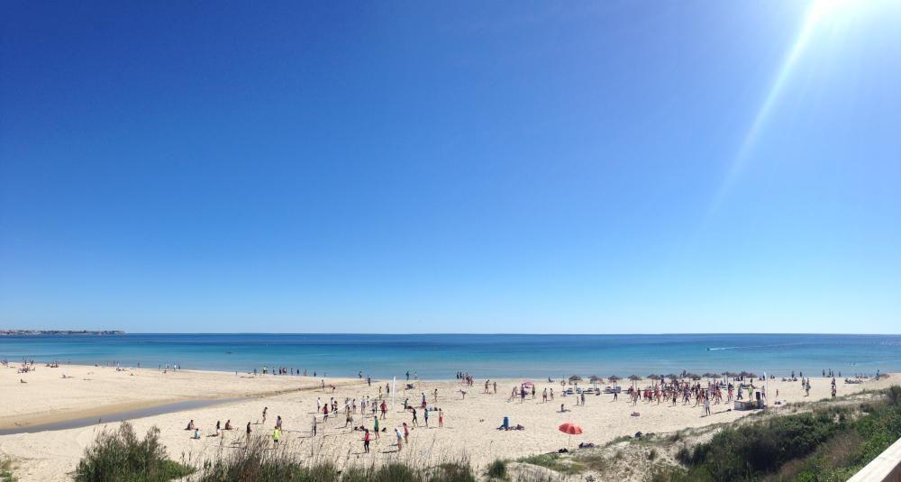 Playa Mil Palmeras, en Pilar de la Horadada, con bandera azul. Los arenales de Higuericas, Puerto y Rocamar, en la misma localidad, también lucen el distintivo.