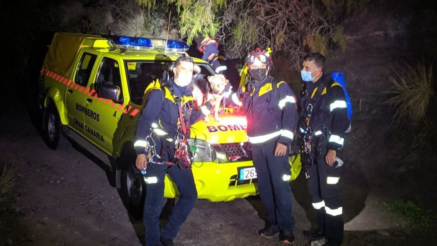 Rescatan un perro encaramado a 35 metros de altura en el Charco Azul