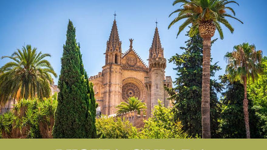 Visita guiada - Descobreix la Seu de Mallorca
