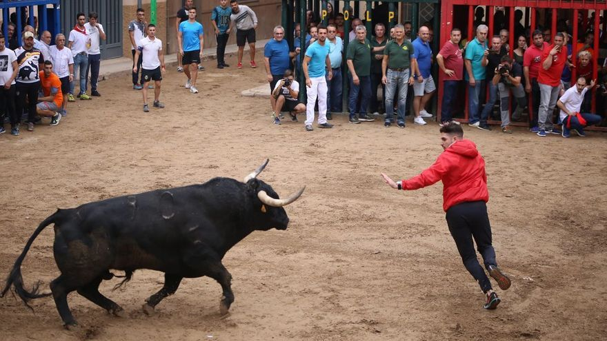 Almassora iniciará la reforma de la plaza Mayor tras las fiestas para garantizar 'bous al carrer'
