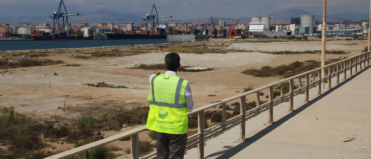 Un trabajador de la Autoridad Portuaria señala la terminal de contenedores desde el extremo sin urbanizar del muelle 19 que agentes portuarios piden adecuar para grandes buques.