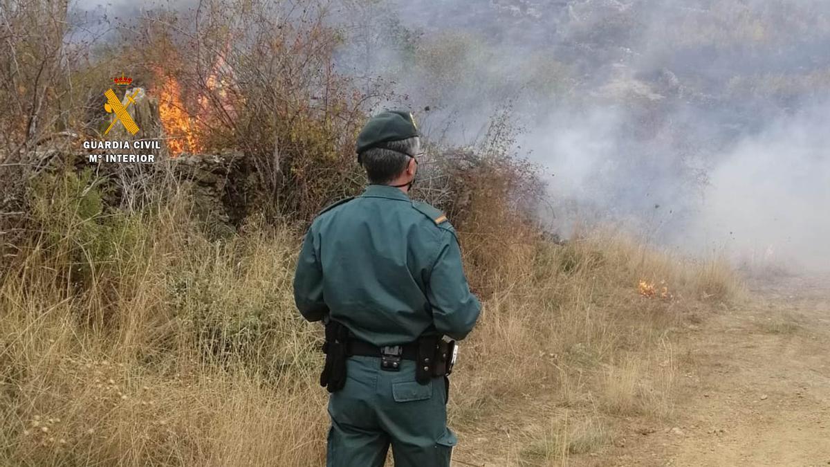 Seprona actuando en un incendio forestal.
