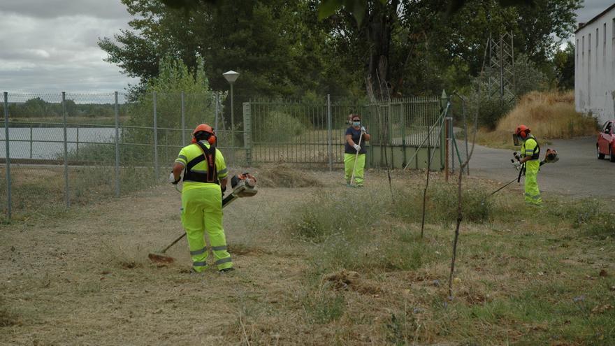 El Plan Forestal emplea a 46 trabajadores en nueve cuadrillas distribuidas por la provincia
