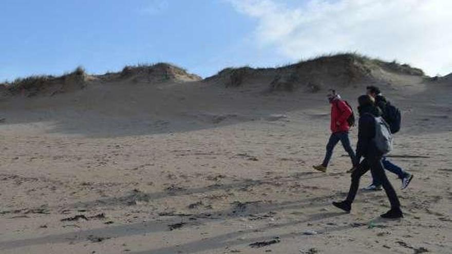 El vertido en la costa atlántica deja 200 aves muertas y 2.000 frailecillos afectados