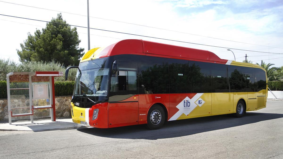 BALEARES.-La nueva red de buses TIB de la zona norte de Mallorca inicia el servicio con nuevas conexiones y más frecuencias
