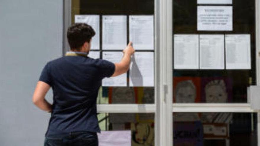 Educación nombra en Canarias a 362 profesores de Secundaria, Idiomas y FP