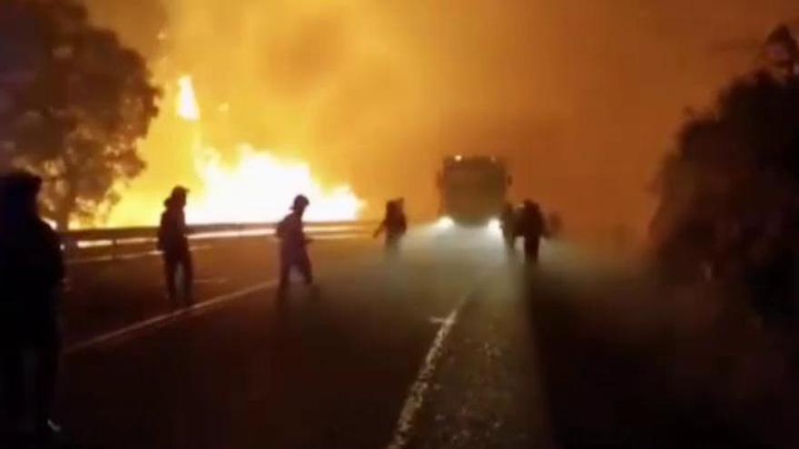 Estabilizado el incendio forestal de Huelva que afecta a 10.000 hectáreas