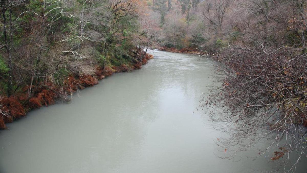 Turbidez de las aguas en el río Eume