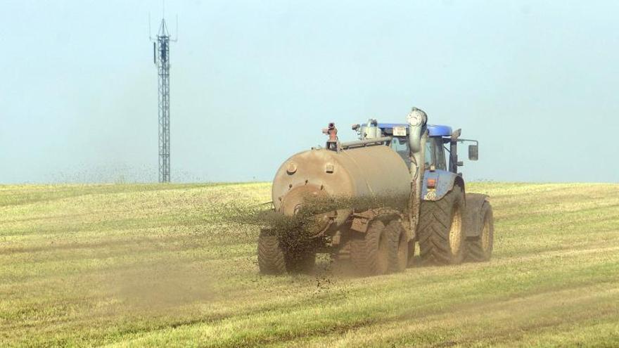 El sector del forraje confía en salvar la cosecha dañada por las borrascas