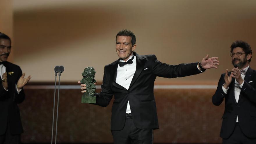 La 35a edició dels Premis Goya es farà el 6 de març a Màlaga «amb totes les mesures de seguretat»
