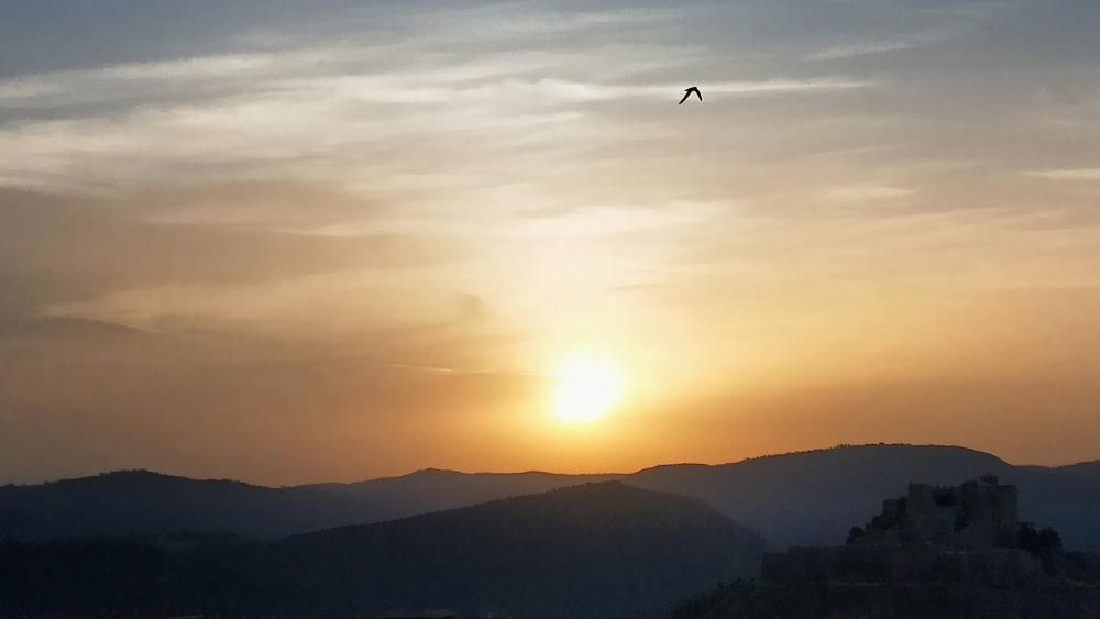 Albada. La sortida del sol a Cardona quedava difuminada per les bandes de núvols prims, i acolorida per la pols en suspensió que hi havia a l'aire. Bonica estampa del paisatge amb un ocell acabant de decorar el cel.