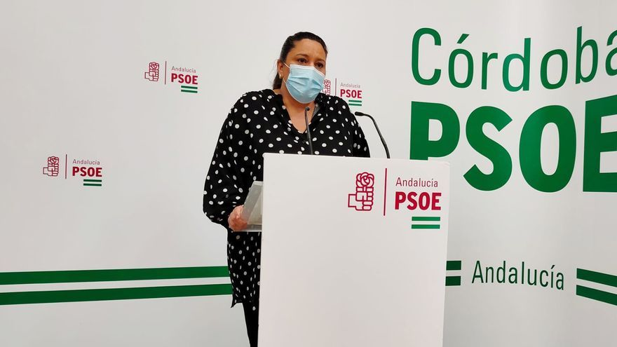 """El PSOE ve """"claramente insuficientes"""" los 15 millones que la Junta dará a los ayuntamientos"""
