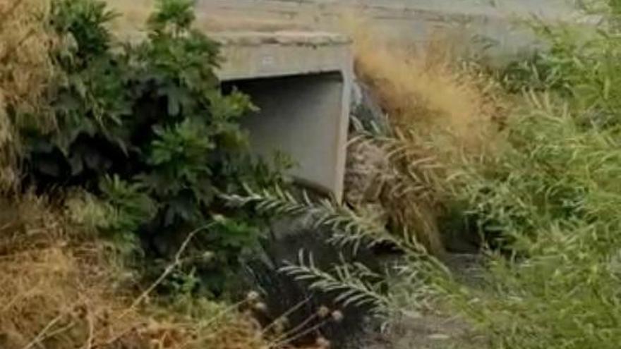 Córdoba puede verter agua residual al Guadalquivir en casos puntuales de lluvias intensas