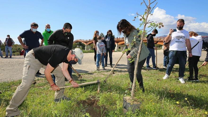 La Diputación celebra el Día del Árbol con una plantación junto a la pasarela del Guadalhorce