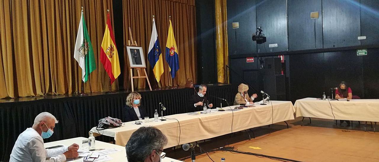 La sesión del Pleno extraordinario en la que se abordó la subasta de suelo municipal en El Palmeral, ayer.     LP/DLP