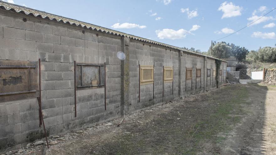 L'Ajuntament de Cantallops, al jutjat per les «irregularitats» d'una granja