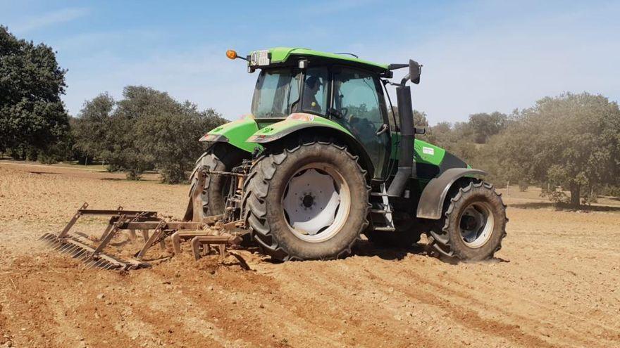 UPA solicita un mejor reparto de la PAC para agricultores y ganaderos