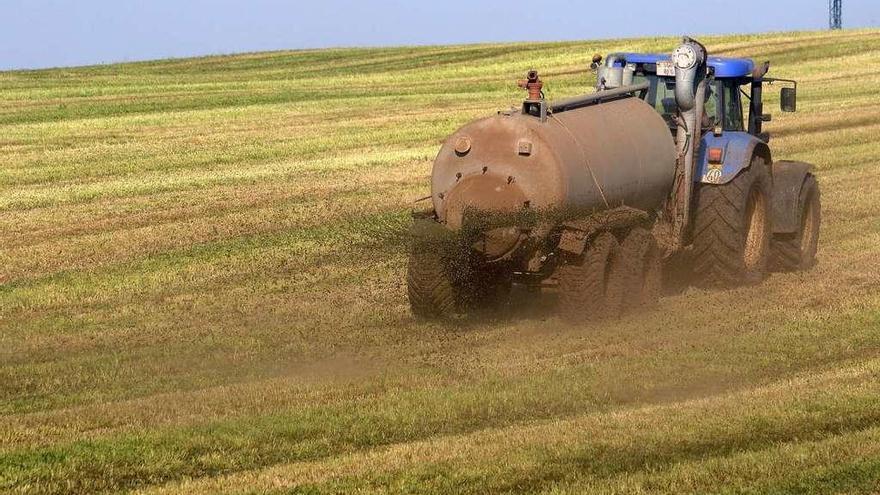 La sequía redujo el forraje un 30%