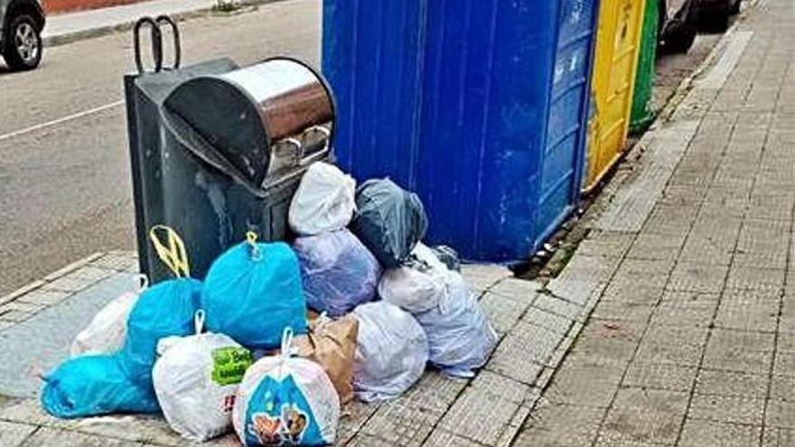 Bolsas de basura junto a un contenedor en la provincia de Zamora.