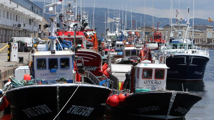 """El ministro de Pesca dice que el impacto del Brexit para el sector pesquero gallego será """"muy limitado"""""""