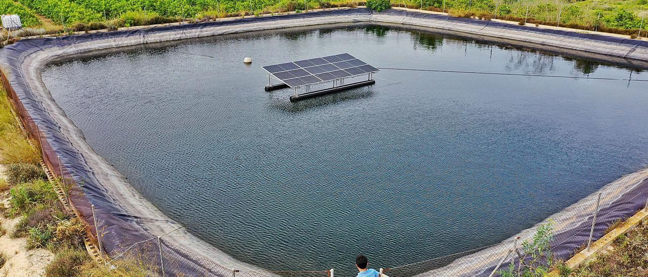 Una placa solar instalada en una balsa de riego en una finca de cítricos y almendros en la pedanía oriolana de Torremendo. | TONY SEVILLA