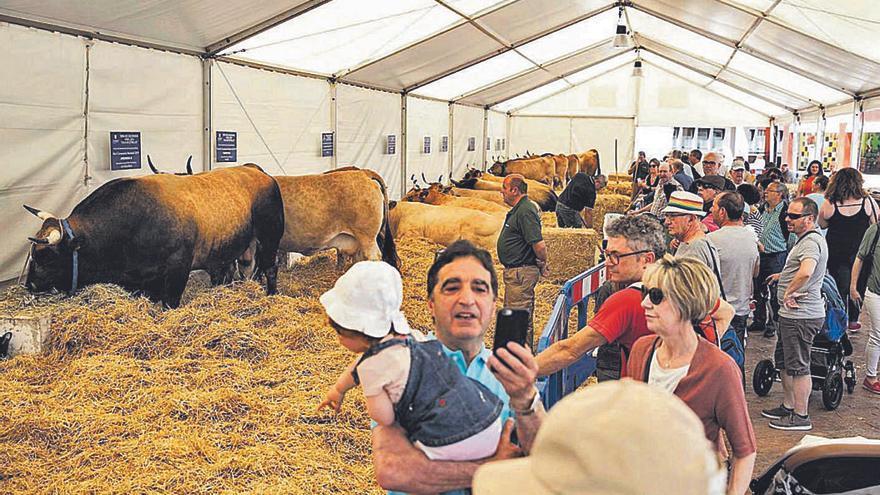 Gaitas, folclore y quesos tomarán la Losa de Oviedo durante el fin de semana de la Ascensión