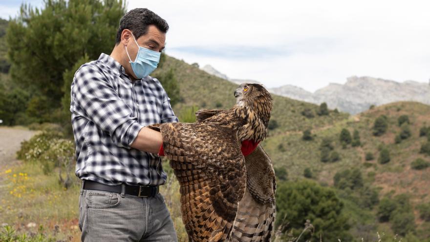 Moreno pide planificar un posible aluvión de visitas a la Sierra de las Nieves