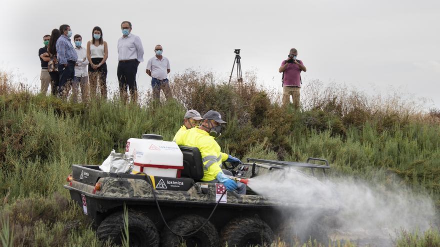 Conoce los pueblos de Castellón que dirán adiós a los molestos mosquitos