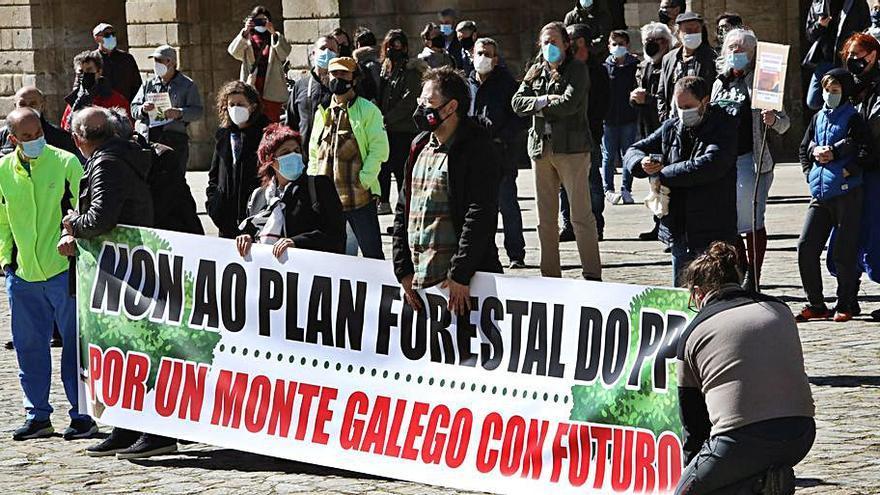 Protestas en una veintena de municipios para reclamar la anulación del Plan Forestal
