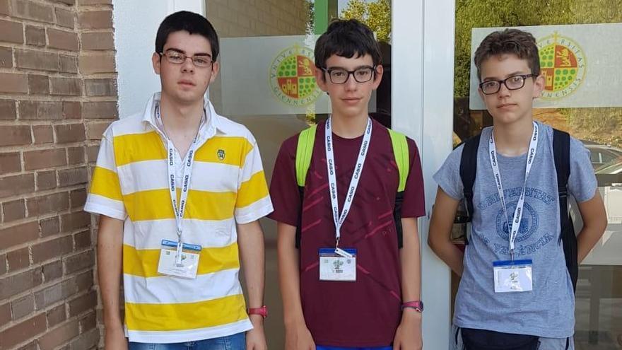 Doble premio para los valencianos en las Olimpiadas Nacionales de Matemáticas