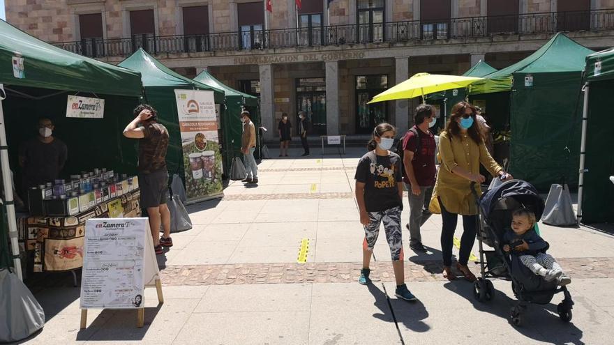 Nueva edición del Mercado Ecológico de Zamora este sábado