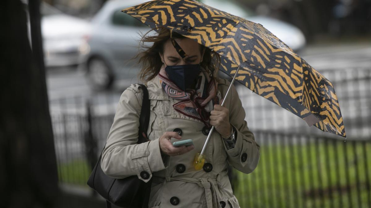 Una mujer pasea por una calle con un paraguas.