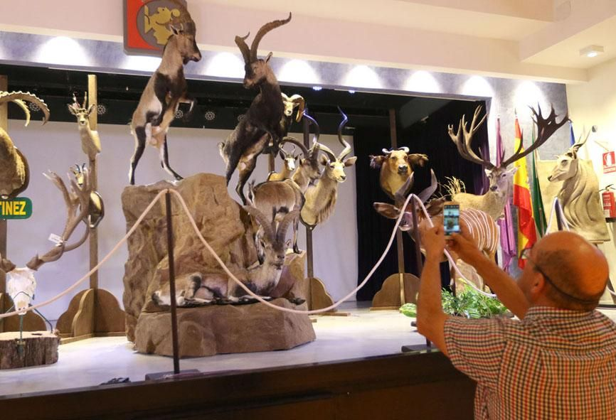 Inauguración de Intercaza en la Diputación