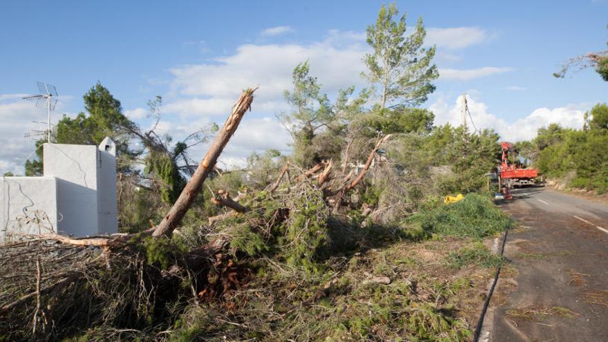 El Govern solicita la declaración de zona de emergencia para Sant Antoni