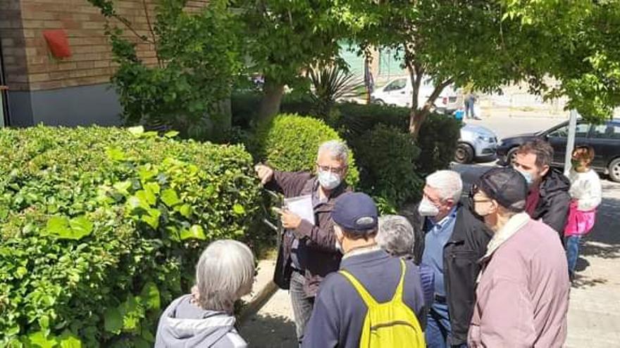 Meandre ofereix a les entitats veïnals de Manresa una visita guiada per conèixer els arbres del seu barri