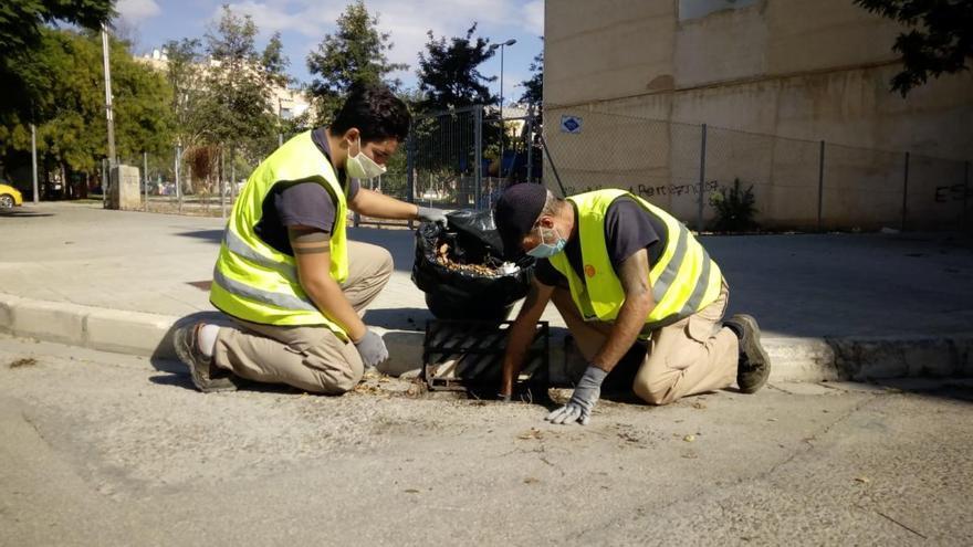 La brigada de servicios limpia las alcantarillas de Picassent