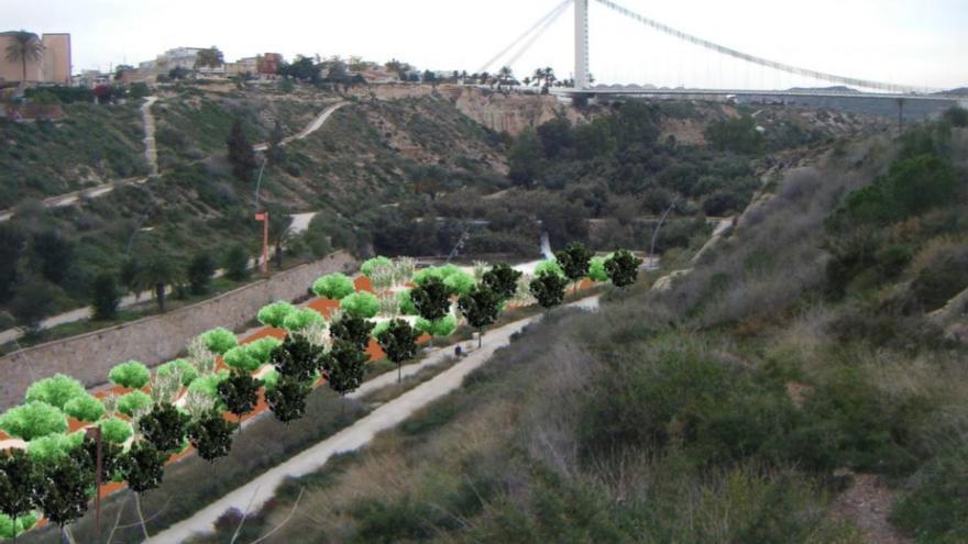 Los ecologistas quieren erradicar el hormigón del río Vinalopó en Elche y plantar especies autóctonas