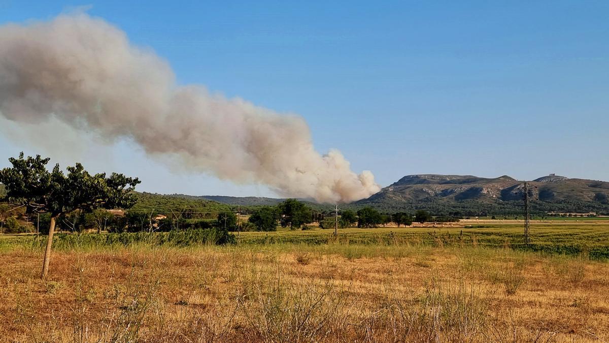 L'incendi del Montgrí vist des de l'Escala