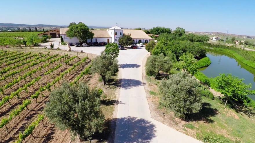 Pago de Tharsys: vinos y cavas únicos por naturaleza