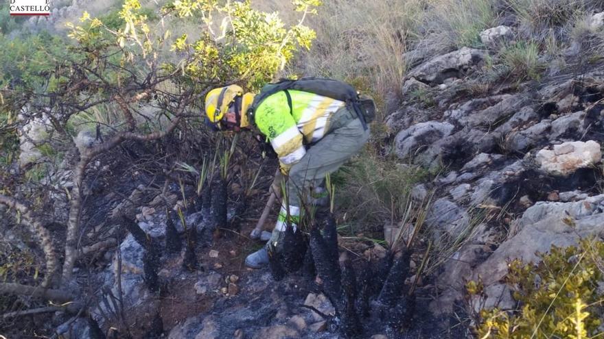 Extinguido un pequeño incendio en el Desert de les Palmes