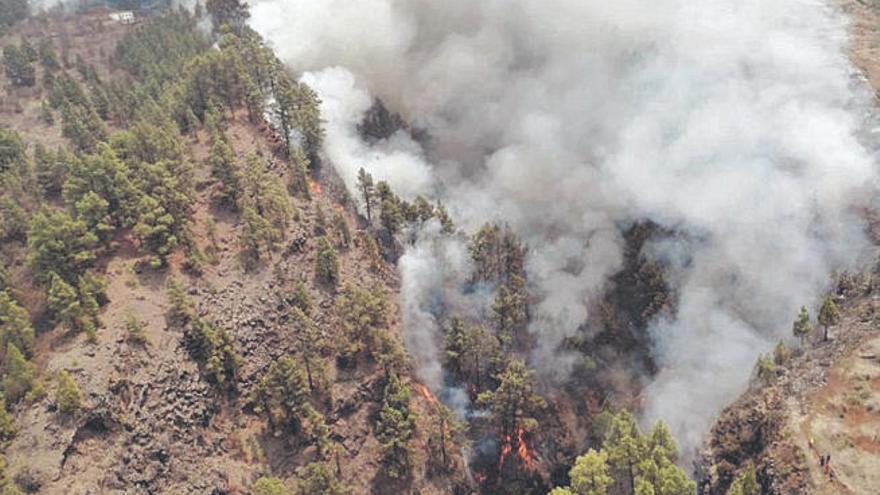 Las Palmas de Gran Canaria refuerza la vigilancia y la prevención de incendios durante el fin de semana