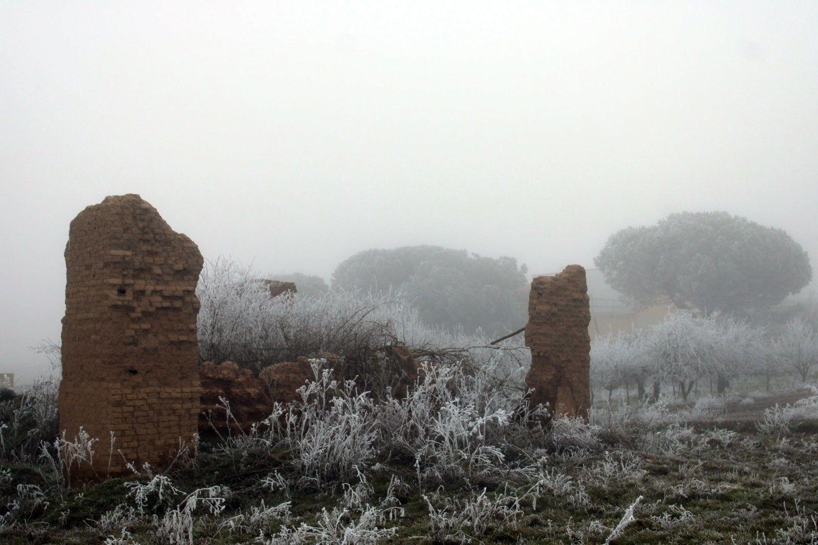 Cencellada en Benavente | Villaveza del Agua, más blanca que nunca