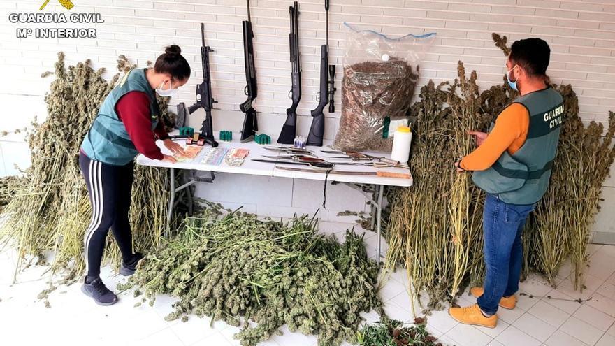 La Guardia Civil despliega a cien agentes para desarticular un grupo que se dedicaba al cultivo y venta de droga en Redován