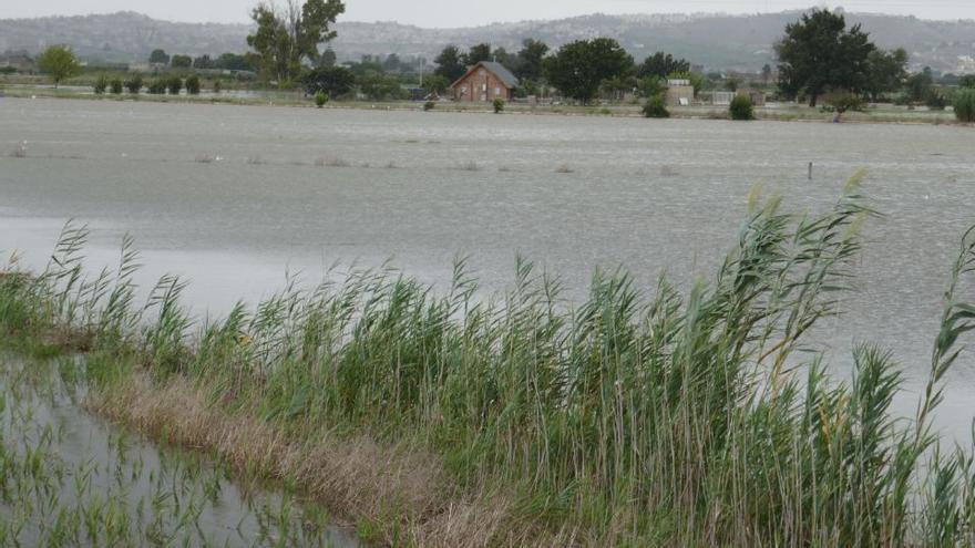 Concausas y tipos de inundaciones en la Vega Baja del Segura