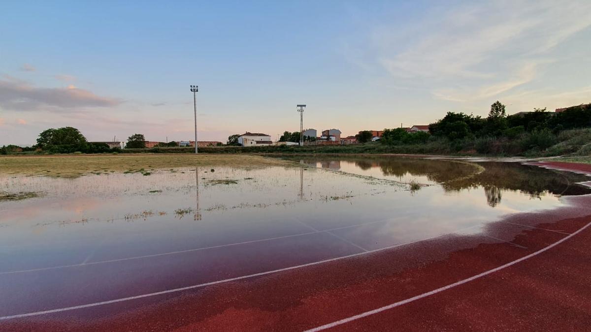 Pistas de atletismo de Benavente anegadas en parte, por una fuga de agua. / E. P.